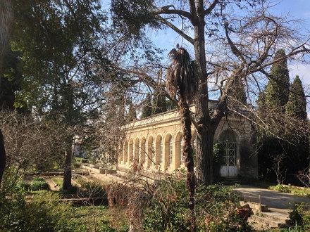 Jardin des plantes - Montpellier