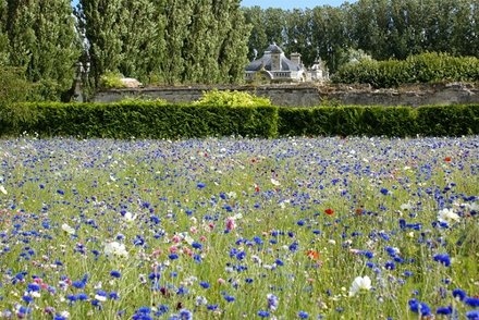 Jardin du Château de Blérancourt
