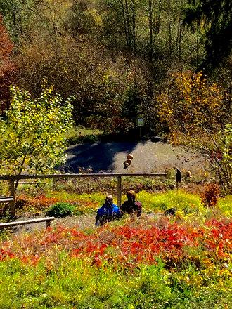 Der Herbst in Oberstdorf ist ein mysterium. Während nur 5 km nördlich eine Nebelsuppe herrscht, sieh
