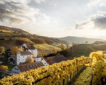 Schulheim Schloss Kasteln, Oberflachs Aargau