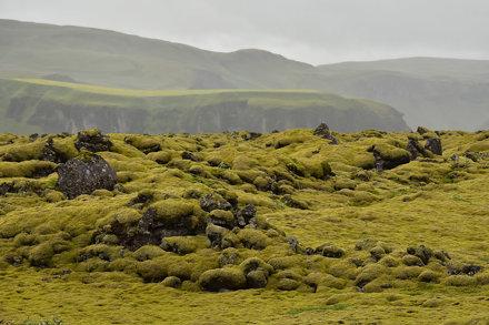 Katla Geopark - Mossy Rocks 21