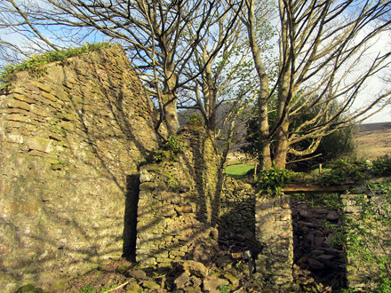 Ruin of the Killelton Church