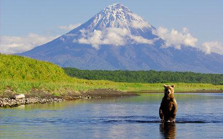 Bear and Kronotsky Volcano