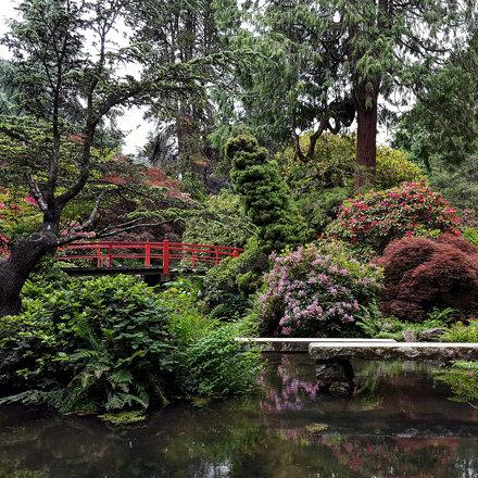 Kubota Gardens.