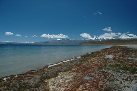 First steps at Manasarovar