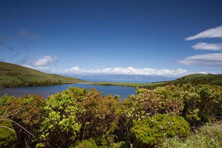 Ilha do Pico, Açores, Portugal