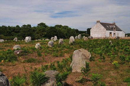 Le Menec - street of stones