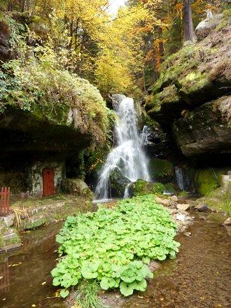 Lichtenhainer Wasserfall (c) AugustusTours, Verena Riedel