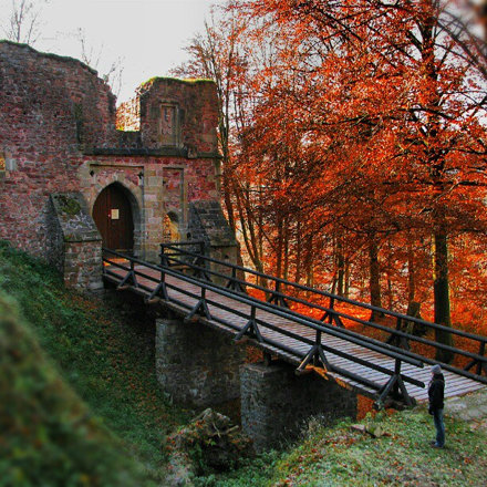 Autumn memories. Ruins of Castle Litice.