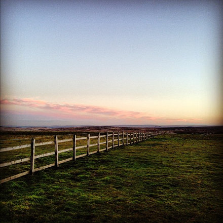 Sunset fence #sunset #fence