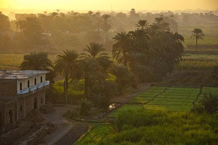 Egyptian Sunrise 1