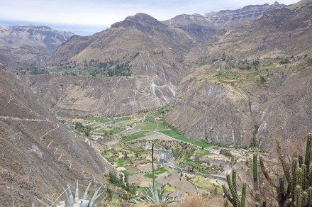 Irrigation - Canyon de Cotahuasi