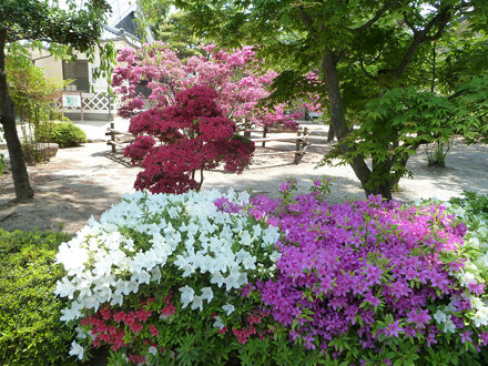 I parken ved Matsumoto slott