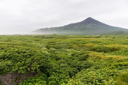 Kuril Islands - Matua
