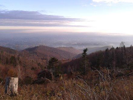 Medvednica (February, 2010)
