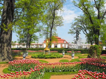 Monplaisir Palace in the Lower Gardens, Peterhof Palace