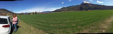 panorama by Mount Ida