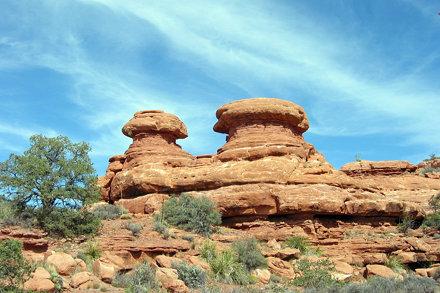 Mushroom Formations