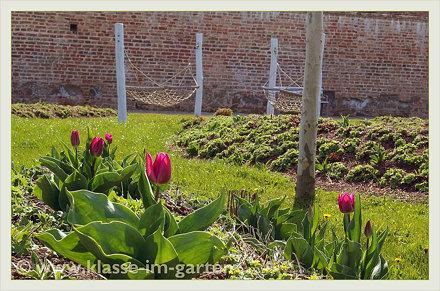Wien Schloss Neugebaeude - noerdlicher garten | 2014-04
