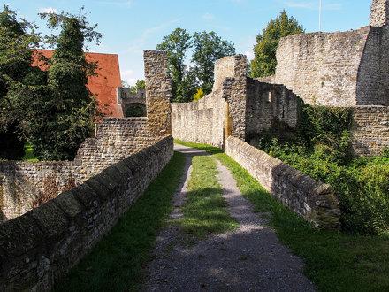 nippenburg02