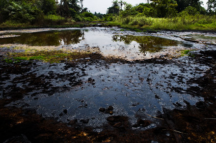 The Oil Industry in the Niger Delta