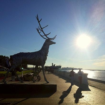 Гордый олень... #нижнийновгород #памятник #символ #nnov #ннов #солнце #nizhnynovgorod #набережная #н