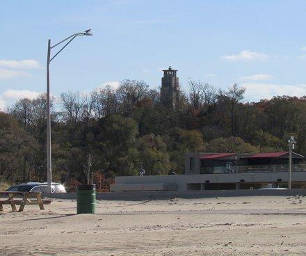 DeBrazza's Monkey Yawn!