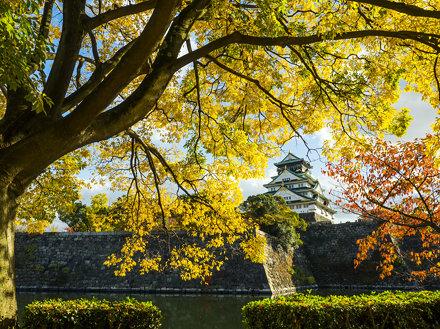 Osaka Castle ● 大阪城