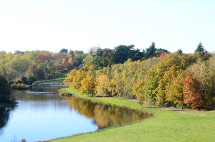 Painshill Park 11 November 2012 007