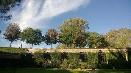 Garden of Palazzo Pfanner. I can spend hours here. Love this place.