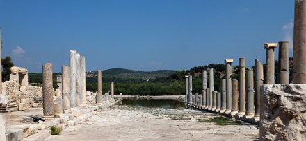 Patara columns