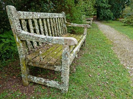 Bench, Penjerrick