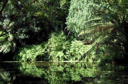 Budock Water