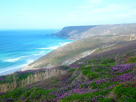Cornwall - Porthtowan and Chapel Porth - 171