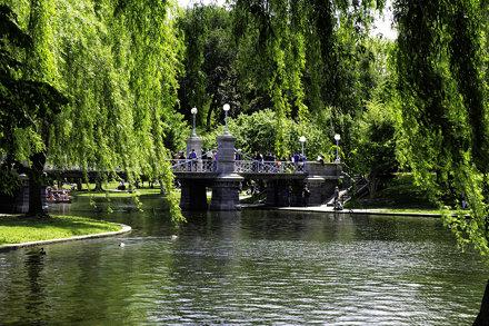 Boston Public Gardens May 17-2