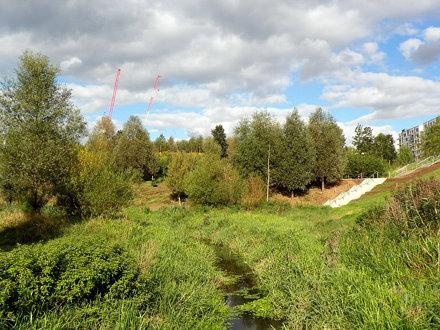 GOC Walthamstow to Stratford 213: Queen Elizabeth Olympic Park wetlands