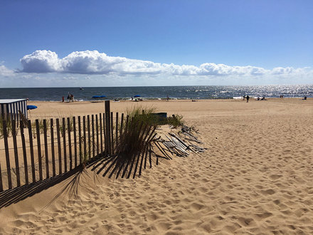 Rehoboth Poodle Beach