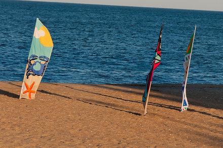 Kites on display
