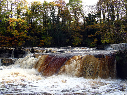 Richmond Falls, Swollen River, Autumn