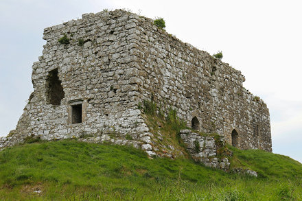 Dunamase Castle, Co. Laois (506923)