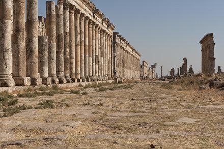 Apamea III. Cardo Maximus