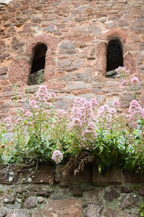 Rougemont Castle Gatehouse, Exeter, Devon