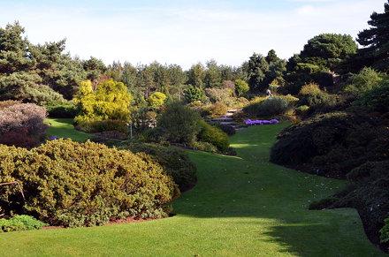 Royal Botanic Garden Edinburgh 3