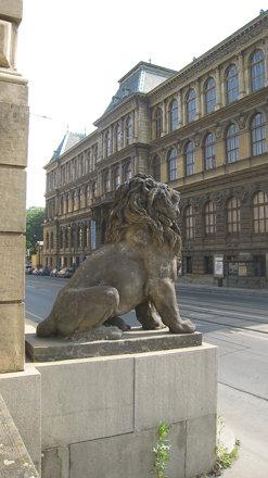 lion outside the Rudolfinum
