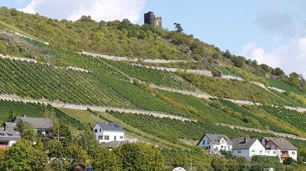 Allemagne, Lorch, ruines du Burg (château fort) Nollig, initialement construit vers 1300 comme tour