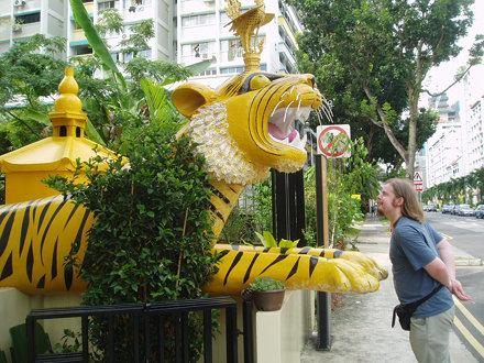 Tiger, Singapore