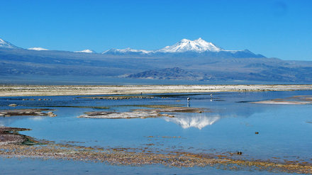 Laguna Chaxa - Explore