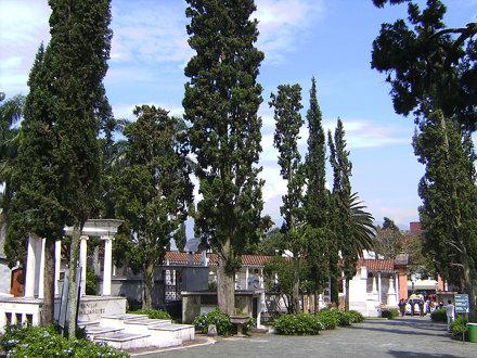 Cementerio San Pedro