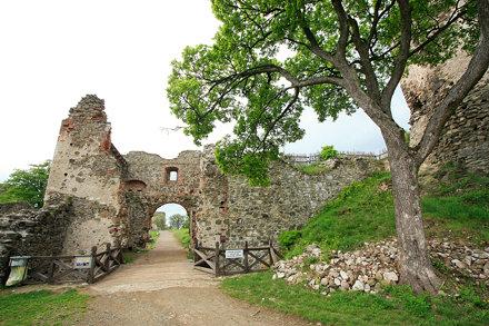 Castle ruin Šariš