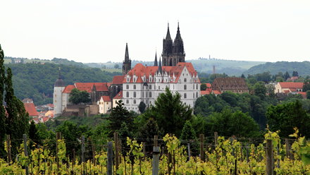 Albrechtsburg and Meissen Cathedral from Weingut Schloss Proschwitz - in Germany